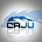 caju1337